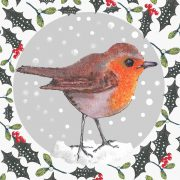 1412-robin-in-the-snow