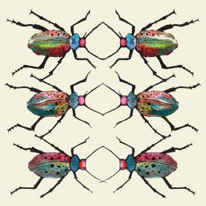 15062-original-beetles-cream