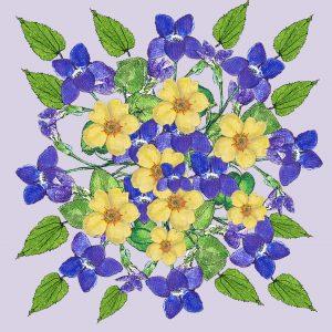 16073-parma-violets