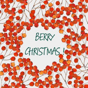 1427 Very Berry Christmas !