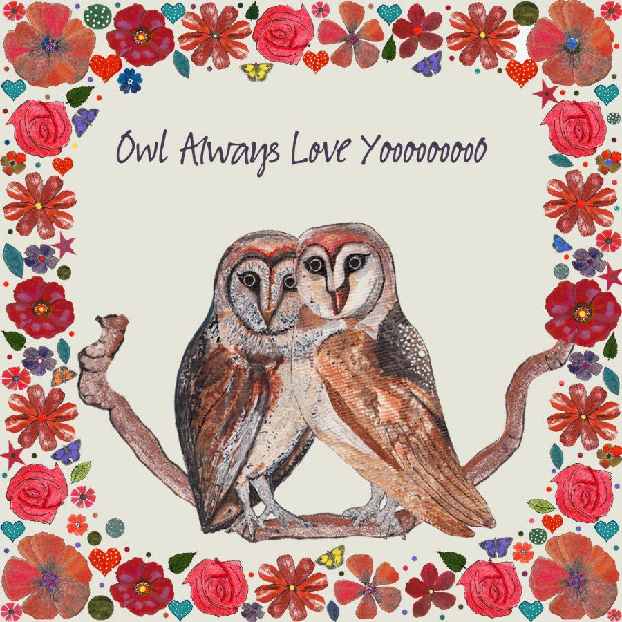 17040 Affectionate Owls